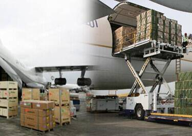 Airport To Airport Shipping to Cameroon
